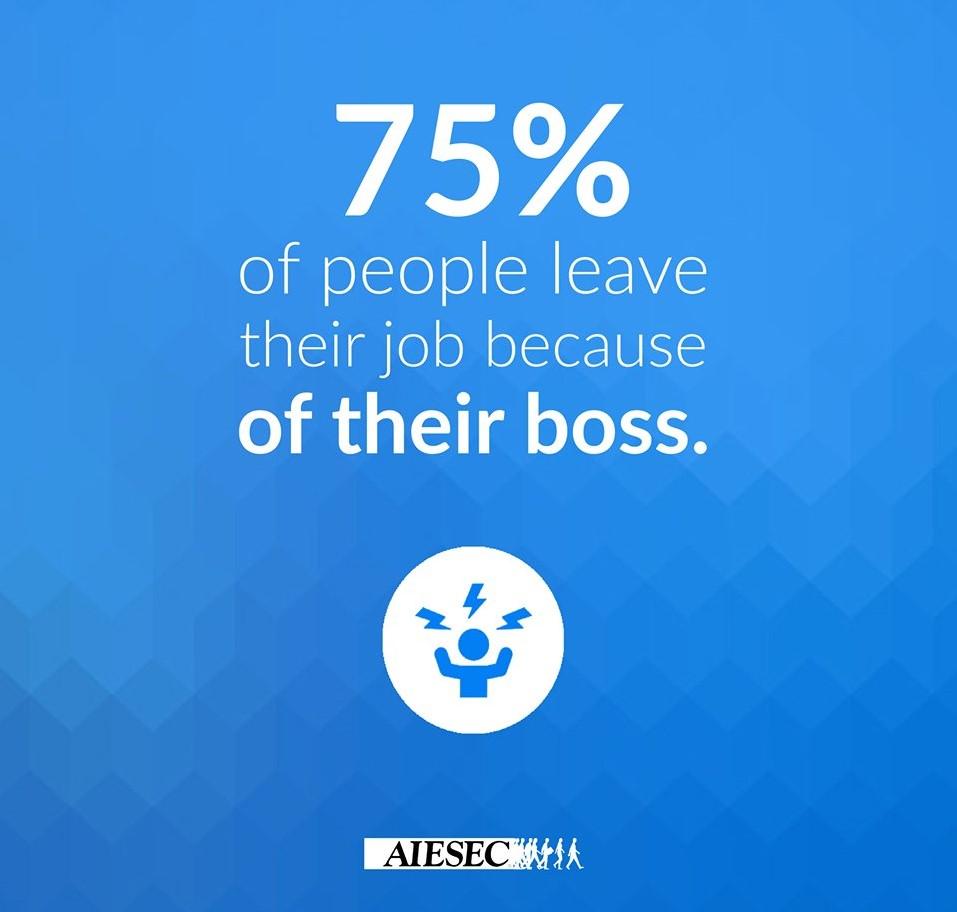Jd_Agency leading Boss